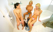 Reality Kings georgia 3 amazing hot super hot ass little teen little hot titty babes get finger fucked hard aftter stripping and licking eachother in these hot sauna bathroom fucking lesbian 3some teen pics