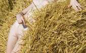 Met Art Sophy A Presenting Sophy by Elena Ray Hey watch this model laying on the hay with her golden hair and small breasts popping up.
