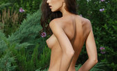 Met Art Anna AJ Drosia by Leonardo 45279 Anna AJ's magnificent slender physique with round perky breasts and enviable long, svelte legs stand out against the deep green foliages and lush grass.