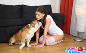 Little Caprice pics_bulldog2 Gorgeous teen Caprice flirting & striping for you!