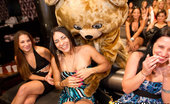 Dancing Bear Which one of these horny girls can suck off these strippers fastest!
