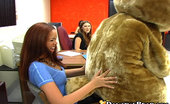 Dancing Bear Cock hungry girls at the office