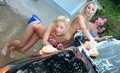 We Live Together louisa 4 amazing hot bikini babes get wet and horny washing their cars then get their hot boxes pounded hard in these steamy wet dildo fucking pics and big 3 minute movie