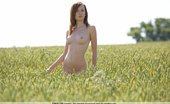 Femjoy Daisy Richard Williams Cornfield Hideaway