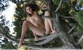 Femjoy Sambella Valery Anzilov 71387 Tree of Life