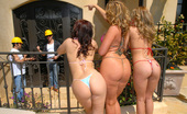 Flower Tucci  72562 Flower and her friends are gettin all oild up in these hot poolside photos