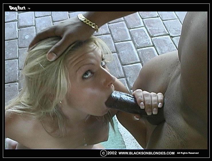 Interracial Anal Big Tits Hd