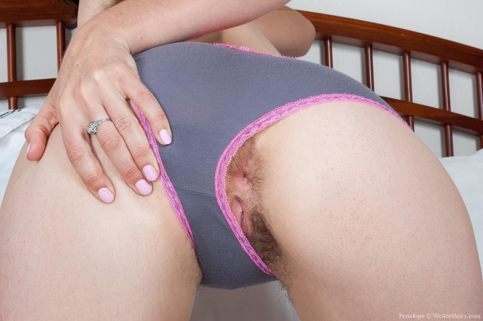 quality anal