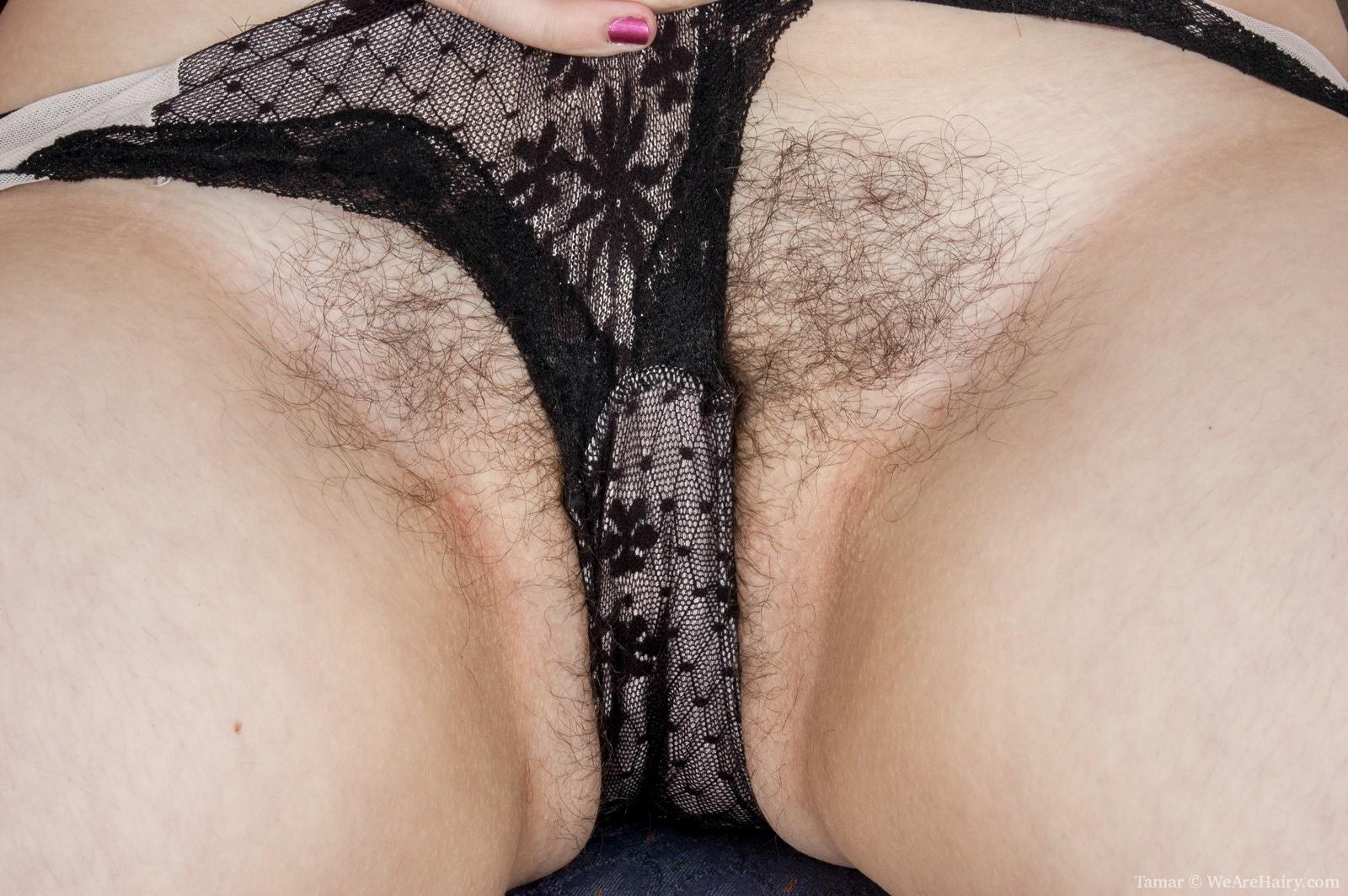 Hairy Pussy Fucking Big Dicks