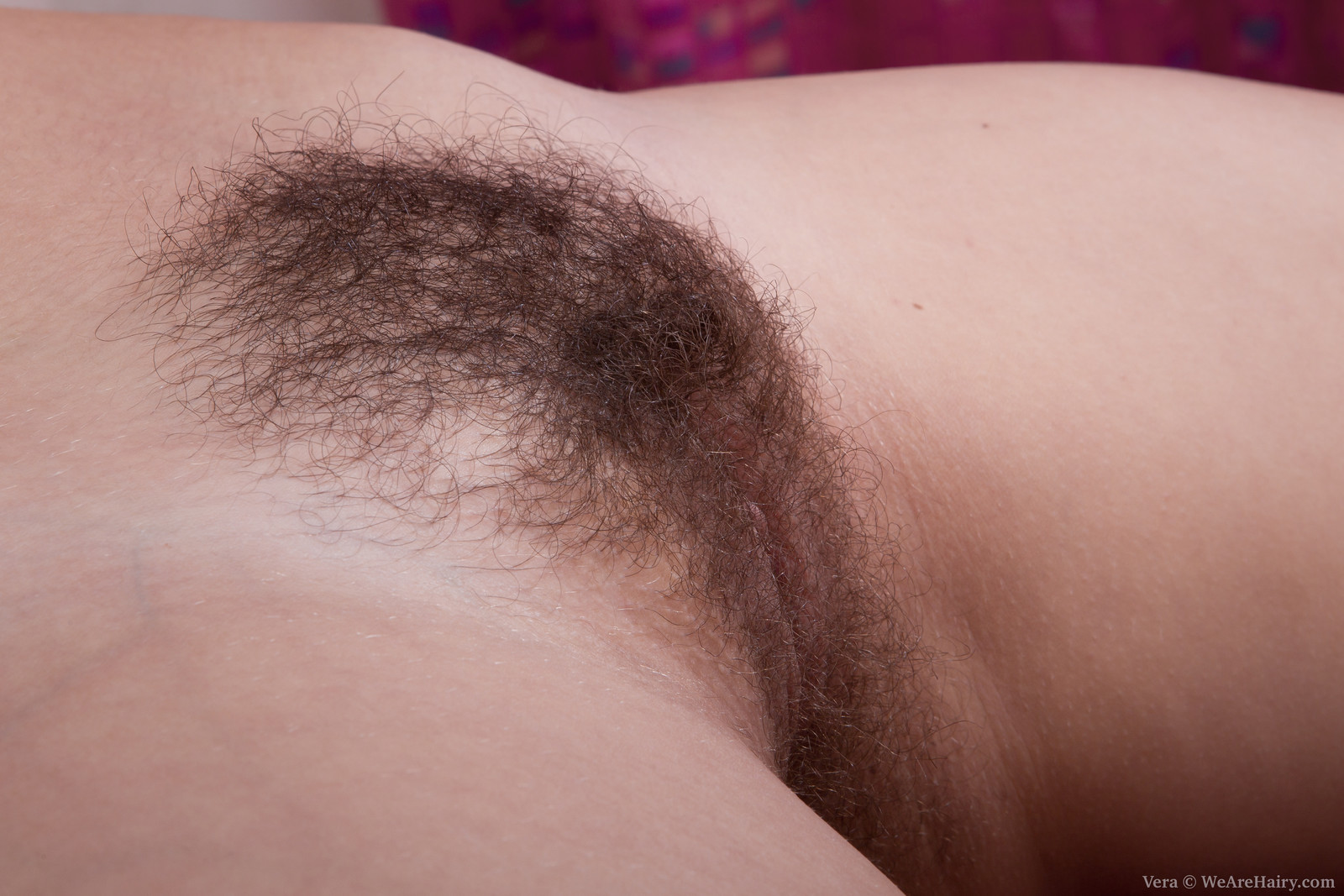 image Hairy babe vera gave moisture to body and masturbate