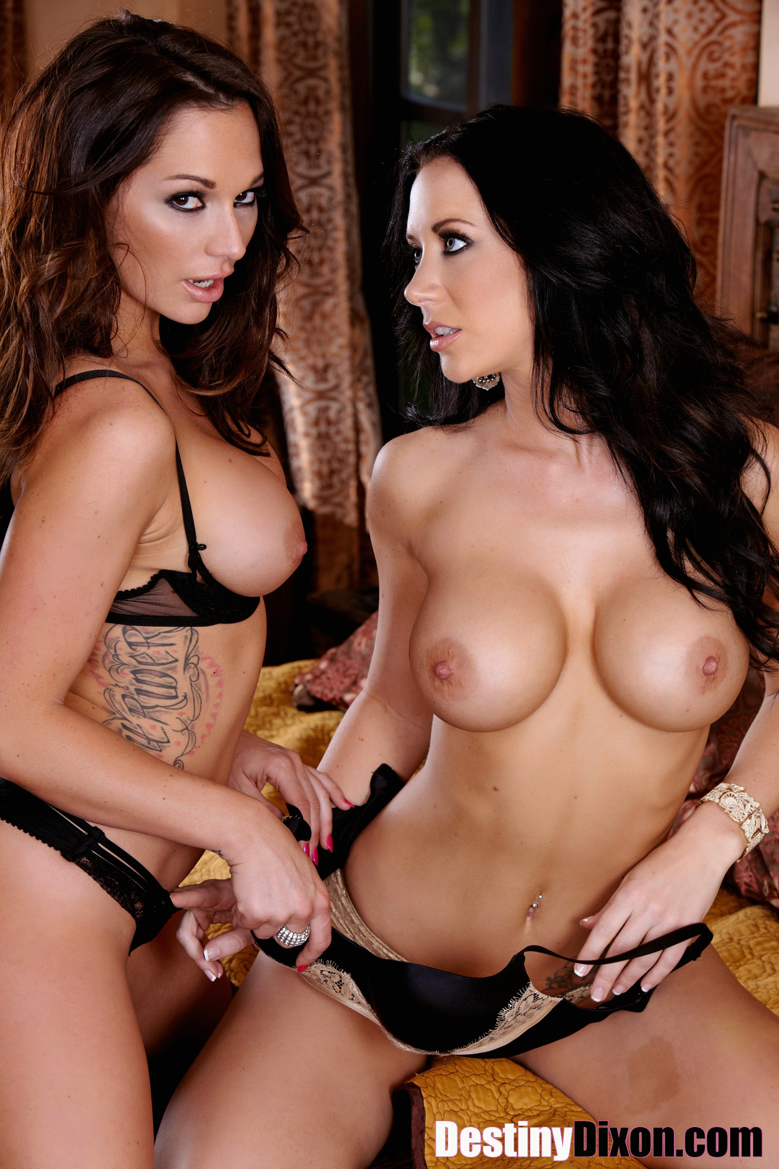 Opinion Free jayden jaymes porn think, that