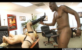 Lex Steele Brooke Scott Brooke Scott interracial with Lex and his huge black cock