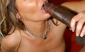 Lex Steele Kayla Quinn,Kelly Leigh,Sheila Marie,Misty Vonage Four pornstars take anal from a big dick