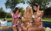 MILF Next Door  These 3 sexy milfs are poolside with the champaigne and pussy lips