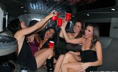 Real Slut Party Alyson Westley And Bianca Bentley And Crissy Love And Eva Nice And Natasha Stern 104131 Hey guys, that was the best night ever. I'm a limo driver; there were five beautiful girls in my limo having fun, dancing, kissing and eating out each other. They gave me their camcorder to film them so they can have a souvenir of that night. They were so