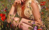 Amour Angels Natasha POPPIES A hot blonde lady has fun outdoors stripping naked her beautiful body in red flowers and smiling teasingly at camera