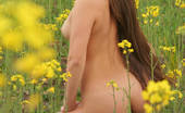 Amour Angels Dorothy YELLOW Staggering nude rogue is wondering in the boundless flower field and looks like a real goddess in the bright green grass.