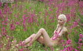 Amour Angels Linda BRIGHT SUMMER 106705 Slender and flexible teen blonde poses naked in the field spreading her gorgeous legs wide.