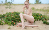 Amour Angels Inga TASTY BERRY Adorable slender teen cutie taking off clothes and posing absolutely naked on the nature.