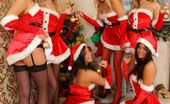 Only Tease Hayley-Marie Elle Richie Daisy Watts Rosie W Hayley Marie Lucy Anne India Reynolds tease their way from sexy Santa outfits.