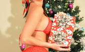 Tiffany Preston A big dick in a box for Xmast Holidays is near and I like to wish you a merry Christmas to all of you that have been loyal to me so far. Here is one of my last photo set guys where I open one of my gift for xmast and discover a hard cock in it and enjoy sucking it and crave a cumshot
