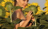 MPL Studios Marta Flowers In The Field