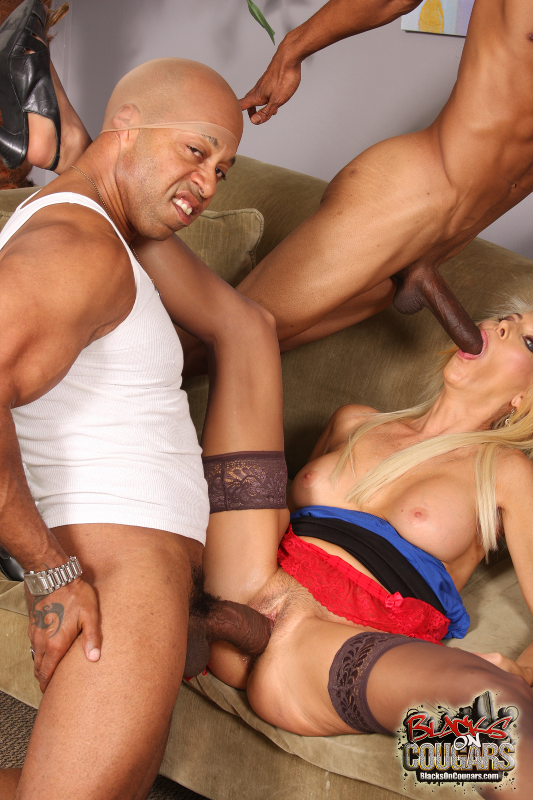image Black robbers double team cougar