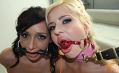 Cum Disgrace Andi Anderson Nasty Little Slut With Big Lips Takes Load While Roped Up!