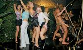 Drunk Sex Orgy Orgy Fuckfest Cock Sucking Drunken Sluts Having Fun At A Hot Sex Orgy