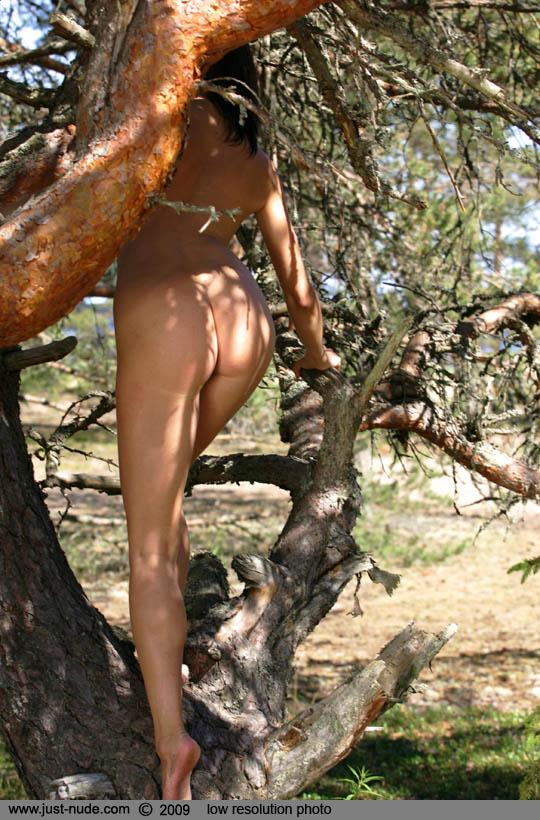 Moreno nackt Taina  Taina Moreno