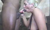 Claudia Marie 1015sitemember3 Gigantic Tit White Milf 'S Asshole Ripped Out By The Roots With Black Cock