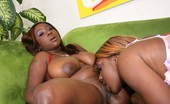 Real Black Lesbians Button & Sweet Essence Button And Sweet Essence Rub Their Big Black Tits Together And Bang Their Holes With Toys
