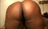Chubby Sistas Thunder Cat & Dwayne Cummings BBW Takes Several Days' Worth Of Jism