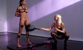 Electro Sluts 229230 Beretta James wants to cum and Lorelei Lee wants to torture her. In this update, Lorelei dominates through denial.