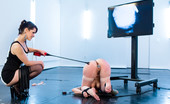 Electro Sluts Cute, mousey Missy Minks with her head locked in a pit in the floor is tested with a cattle prod, and electro pussy plus and an intense flogging.