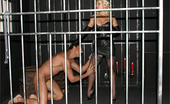 Leggy Lana 232253 I'Ve Just Built A New Dungeon In My Cellar And Decided To Try It Out With My Male Slave
