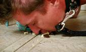 Under Feet Beautiful Housewife Feeding A Leashed Guy With Food Smashed On The Floor