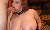 Hairy Pussy Porno Busty Pornstar Kitty Taking Dicks In Her Mouth And Hairy Pussy Before She Gets Glazed With Cum