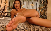 Footsie Babes Sandra Beg To Be Fucked