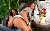 Black Cougars In The Bedroom With Sasha Royce! Sasha Royce, She'S My Real Estate Agent. I'M Looking For A Place