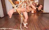 House Of Taboo Severin Sexy Brunette Babe Severin Gets Bound & Spanked In Her Ass