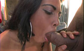 Brazil Bang Brazil Cock Sucker Sluts Hungry Nasty Brazil Bitches Waiting For A Hot Load Of Cum