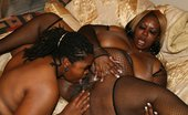 Real Black Fatties Cherry Bomb & Shadow Cat 395184 Sexy Ebony BBW Sluts Take Turns Licking Their Fat Wet Pussies The Fatter These Black Girls Are, The More They Want To Lick Them, As These Fat Black Lesbians Lick Pussies