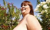 Divine Breasts Josie Plumper Milf BBW Boobs