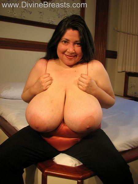 Big Tits Big Booty Latina
