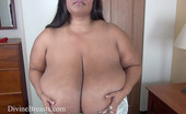 Divine Breasts Cotton Bra Try Outs Tits