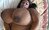 Divine Breasts Cotton Candi Big Boobs Smother