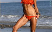 Muscularity Sarah Evangelista Salsa Style NPC Bikini Competitor, Sarah Comes From The San Diego Area. In This Shoot On A San Clemente Beach, Sarah Looks Hot And Lovely In An Orange Salsa Style Bikini.