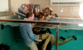 Pornstars At Home Klarisa Leone Very Cute Handsome Babes Fucking Hard In An Indoor Pool