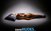 David Nudes Tatyana Tatyana Dramatic Pillow The Body Does Not Wear Out With Use, When The Use Is Such Beauty. ...